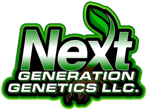Next Generation Genetics